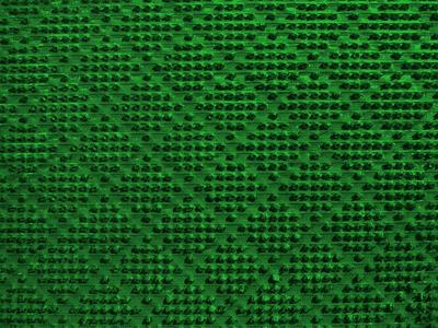 Покрытие ковровое щетинистое в рулонах 15*0,9м арт.263 Зеленый - фото 5906