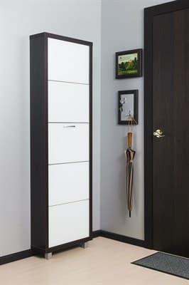 Шкаф для обуви Айрон Люкс 5-ти секционный (Вишня окантовка Вишня - Стекло белое) - фото 5908
