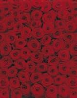 Фотообои KOMAR 194*270cm 4-077 Roses (4 части)