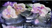 Фартук-панно ГРЕЙС Орхидея на камне! 602*1002мм ТП10019557