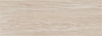 Плитка TSC напольная 20*50 TP5282B