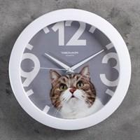 Часы настенные Животный мир Кот белый обод d=29см 2584135/11110193